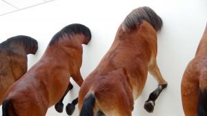 Maurizio Cattelan, Fünf Pferde, Ausstellungsansicht in der Fondation Beyeler, 2013 © Maurizio Cattelan
