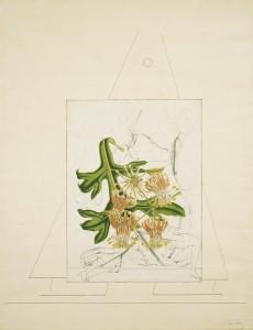 Max Ernst, Loplop présente ..., 1932