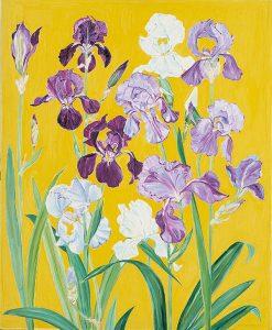 Iris von Roten, Iris auf gelbem Grund, 1981, Sammlung Bonacossa, Frankfurt a. M., Foto: Andreas Howald, Zürich